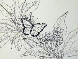 Plumaria and Butterfly by HouseofChabrier