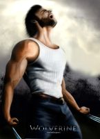 Wolverine by WilleWellDesigner
