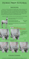 Mega Horse Prep Tutorial by xglassraindrops