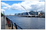 Samuel Beckett Bridge by Encephalartos