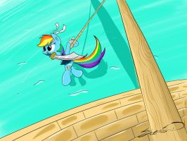 Pirate Dash by ChickenSteve