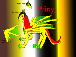 Wing ref sheet by TheFeilineDragojn