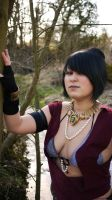 In the Wilds by D2SCosplay