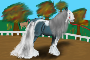 Cairo-Imperial Harvest Show by patchesofheaven74