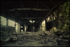 Desolate by Art-ography