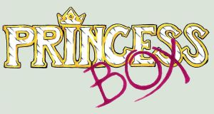PRINCESS BOX ID by SMALL-TOWN-HEROES