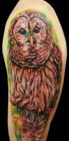 owl arm piece by tat2istcecil