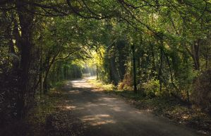 Hillhead road IV by younghappy