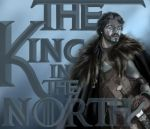 The North Remembers by Elias-Shamir