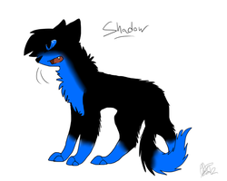 -Request- Shadow by Nekoender