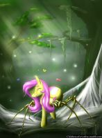 Spidershy by akurion