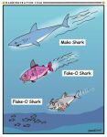 Shark Week Cartoon No. 15 by Conservatoons