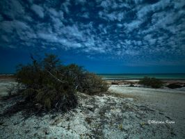 The Clouds of Shark Bay by FireflyPhotosAust