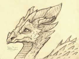 Dragon Sketch 08 by Nimphradora