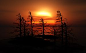 Matte Painting - Sunset Trees by EYADSTUDIO