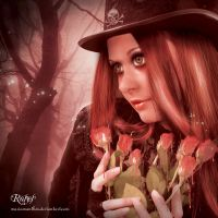 Roses by mariaig