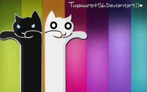 Wallpaper Cats Colors ''stile' by tuyagure456