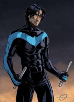 Nightwing by Noiry