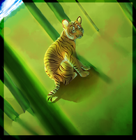 Tiger cub by Hugs4hugs
