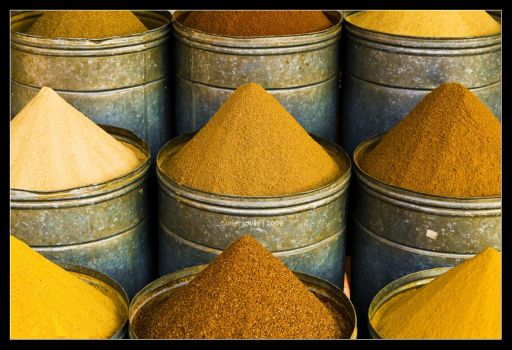Spice of life by mister-kovacs
