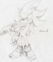 Shadow The Hedgehog by ShadowNro01