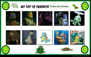 My Top 10 Favorite Turtles And Tortoises by Nicktoons4ever