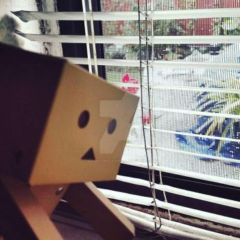 Danboard Doesn't Mind the Rain. by Animalunleashed