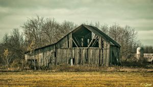 Old Barns of Eastern Ontario by Nini1965