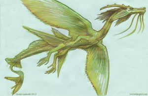 Sketchbook - finny dragon by emla