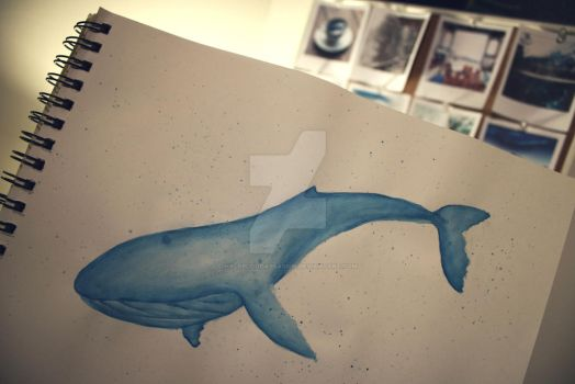 More whale art by HalfBloodAssassin