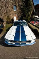 Shelby Clone by AmericanMuscle