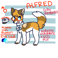 quick ref by alfeddy