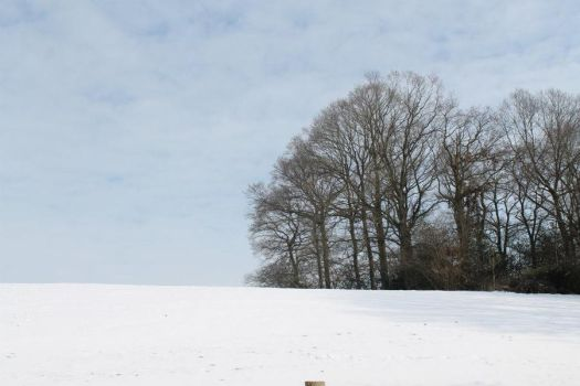Normandy'snow by Zinoow