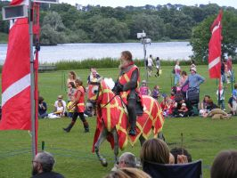 Jousting - Knight 98 by Axy-stock