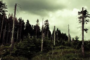 Earth's dying. by CrackinDown