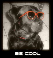 Be Cool by Damon1984
