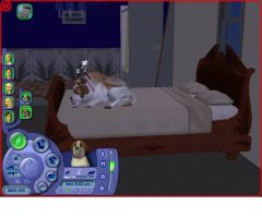 Sims 2 pets Beethoven and Missy sleeping by Anime210freak