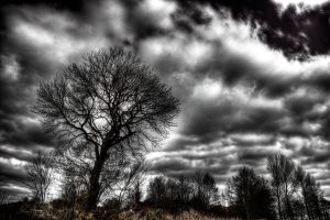 Desolation 10 by t-3-t