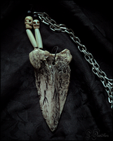 Tooth shaped bone pendant by Grall19