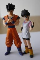 Son Gohan and Videl 2 by Roxi-art