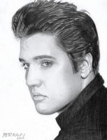ELVIS by carmenharada