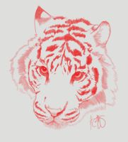 Ruby tiger by Keith-QuintanillA
