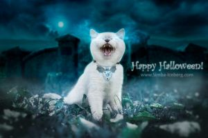 Happy Halloween! by Katrin-Elizabeth