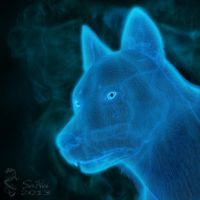 Ghost Wolf by Ealaine
