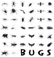 38 Bugs PS Brushes by Anavrin2010