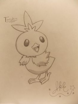 Gift~ .:Torchic:. by SonicPokemonPrincess