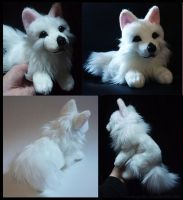 SOLD - Swiss white Shepherd by goiku