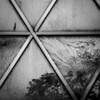 Broken Reality by tholang