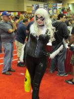 Black Cat by Praxiusalternate