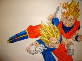 Vegeta vs Goku by Manthanaaa